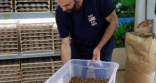 كويتي يجهز لافتتاح مطعم لتقديم أطباق الديدان!