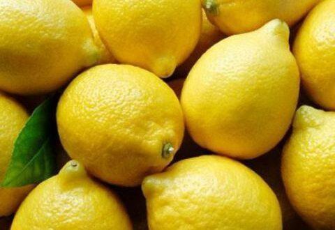 تجار سوق الهال بدمشق: الليمون المهرب