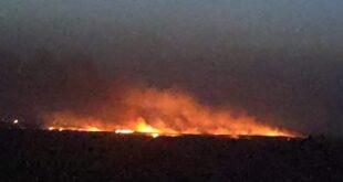حريق ضخم في أحراش السويداء