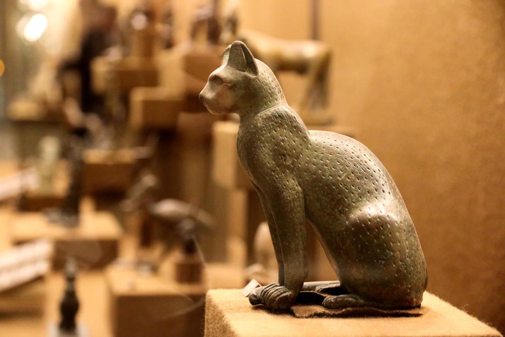 ما سر تقديس القطط في مصر القديمة؟