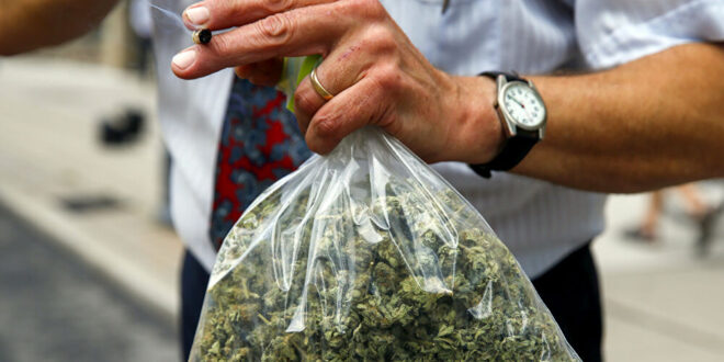 الماريجوانا والنبيذ مكافأة لمن يتلقى لقاح فيروس كورونا في هذا البلد
