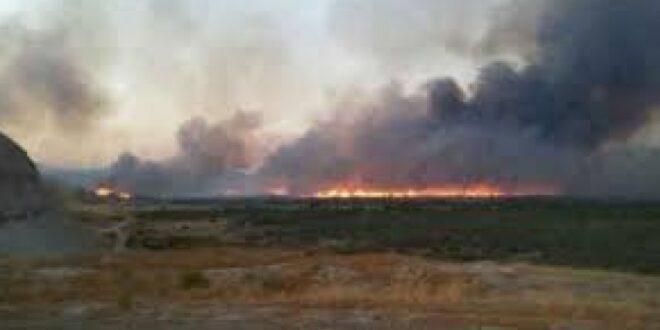 حرائق هائلة نتيجة القصف التركي على مزارع بريف حلب