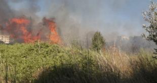 إخماد ٨ حرائق خلال يوم واحد في اللاذقية