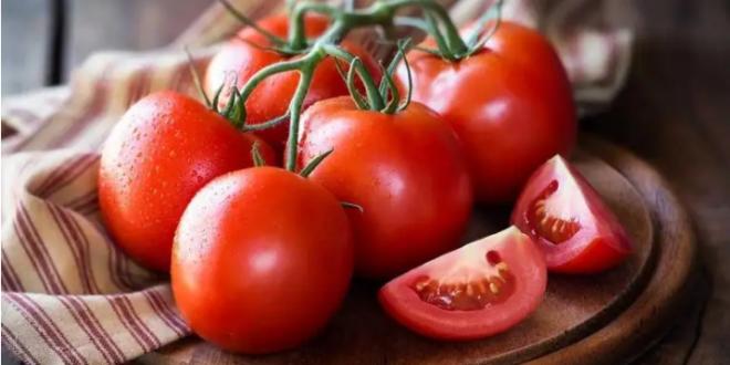 فئات ممنوعة من أكل الطماطم
