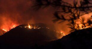 حريق ضخم يسفر عن ضحايا