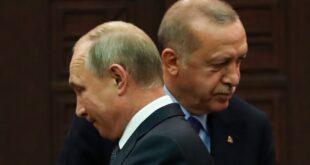 طعنات في ظهر القيصر الروسي.. ماذا يفعل إردوغان؟