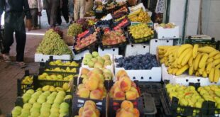 «التموين»:من المتوقع ارتفاع طفيف على أسعار الخضروات والفواكه بسبب النقل
