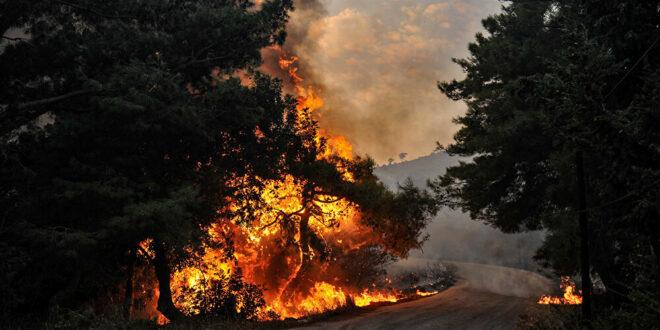 المروحيات الروسية تشارك بإطفاء الحرائق اللبنانية قرب الحدود السورية