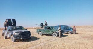 الجيش السوري يبدأ عملية في الصحراء... وخلايا التنظيم تنكفئ نحو عمق البادية