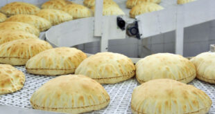 في اليوم الأول لتطبيق خطة الخبز الجديدة.. إشكالات وتساؤلات