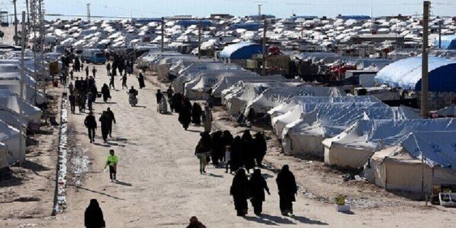 عمليات تصفية في مخيم الهول