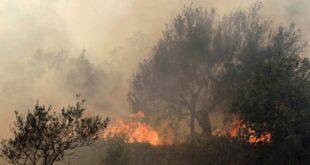 إخماد حرائق في الأراضي الزراعية بمحافظة اللاذقية