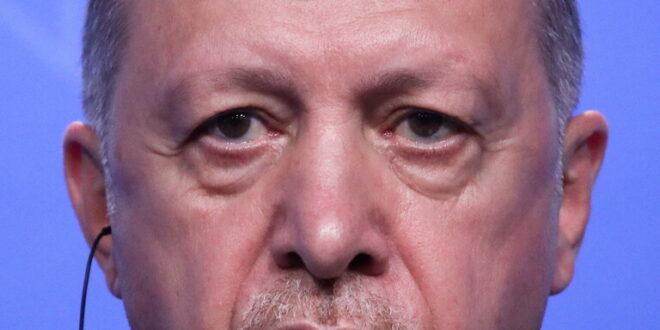 أردوغان: عودة اللاجئين السوريين إلى ديارهم
