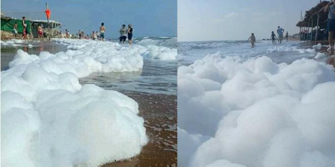 زبد البحر يغزو شاطئ عمريت في طرطوس.. وباحث يشير إلى فوائده العلاجية المتعددة