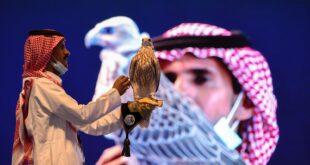 بيع صقر سعودي بـ 72 ألف دولار