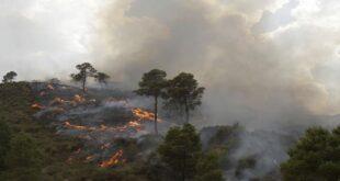الأمم المتحدة: منطقة المتوسط هي مركز التغير المناخي وسكانها معرضون لكوارث غير مسبوقة