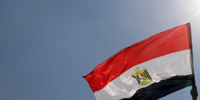 سائق مصري يصطحب كوبرا في سيارة أجرة ويتسبب بمقتل 4 أشخاص من عائلة واحدة