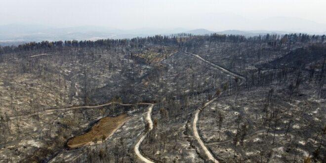كارثة بيئية كبرى في اليونان