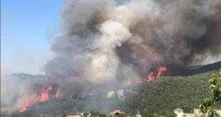 نائبان لبنانيان يشكران سوريا على المساعدة بإطفاء الحرائق