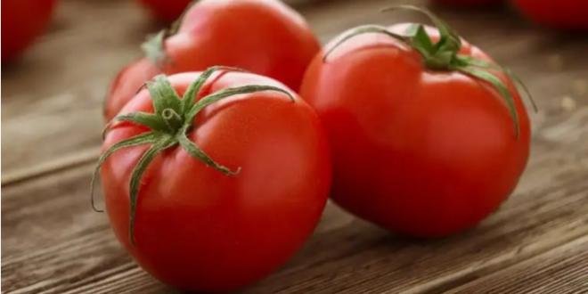 طريقة حفظ الطماطم لمدة طويلة