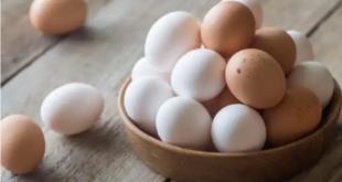نوع من البيض يمتلك 6 أضعاف من