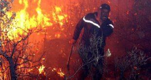 حرائق الغابات تستعر بالجزائر وتودي بحياة 42 شخصا بينهم جنود