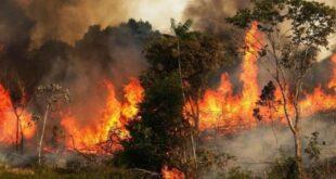 تغييرات طارئة بمؤشرات خطورة انتشار الحرائق في سورية