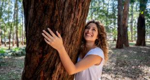 ما السر وراء عناق الناس أشجار البتولا في روسيا