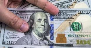 دولارات مزورة ومجمدة تنتشر في أسواق مدينة الرقة