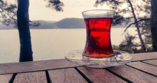 علماء يكشفون سر تشكل الطبقة البيضاء على سطح أكواب الشاي