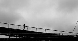 فيديو مرعب تحت جسر.. ما هو المخلوق الذي يختلس النظر هناك؟