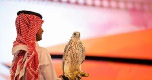"""السعودية..بيع أغلى صقر """"جير"""" في العالم بمبلغ يقارب النصف مليون دولار! (صورة)"""
