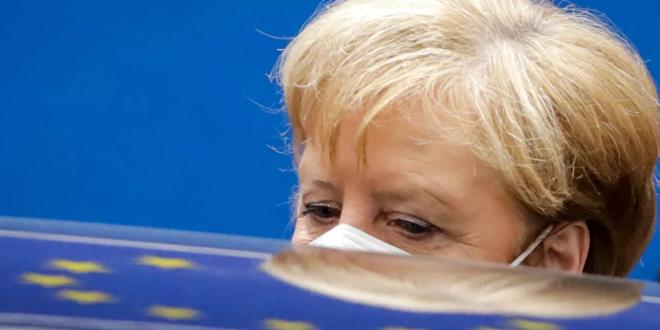 طير يحط على رأس المستشارة الألمانية خلال