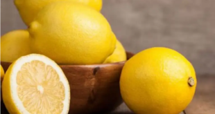 تناول الليمون يومياً