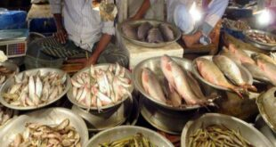 حادثة تسرب الفيول على سوق السمك