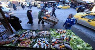 تقرير تفتيشي: السورية للتجارة باعت 74 طن سمك إلى التجار كانت مخصصة للمواطنين!!