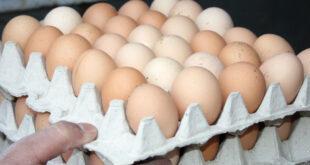 البيض يحلق مجدداً وسعر البيضة الواحدة يصل لحدود 500 ليرة!
